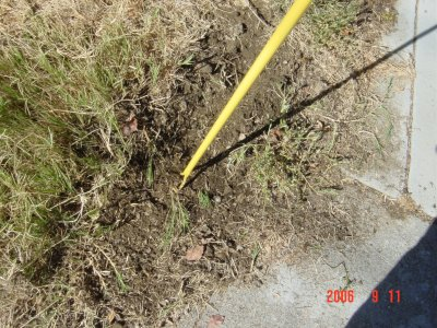 Weed Twister vs. Bermudagrass